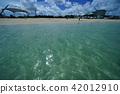 Okinawa, blue water, marine 42012910