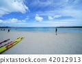 Okinawa, blue water, marine 42012913
