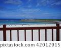 Okinawa, blue water, marine 42012915