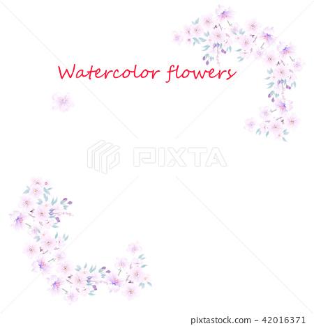 핑크 수채화 꽃 42016371