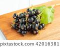 cassis, black currant, berries 42016381