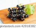 cassis, black currant, berries 42016382