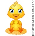 Vector illustration of  Cute cartoon baby chicken  42018677