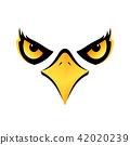 vector, bird, falcon 42020239