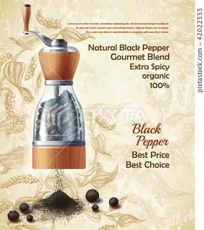 Vector promo banner of black pepper natural spice 42022555