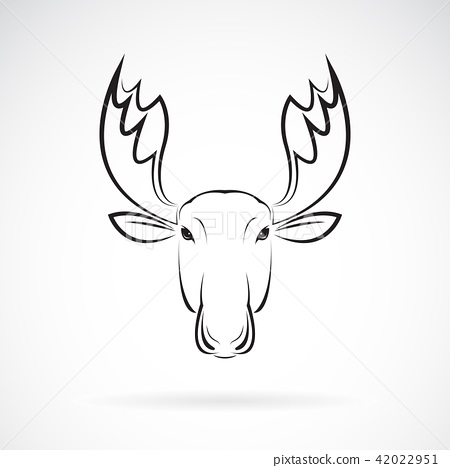 Vector of moose deer head on white background. 42022951