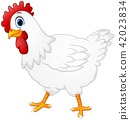 Cute hen cartoon isolated on white background 42023834