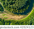 Aerial view of forest and river 42024123