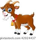น่ารัก,สัตว์,สัตว์ต่างๆ 42024437