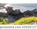 风景 自然 济州岛 42026137