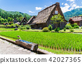 Summer Shirakawa Town 42027365