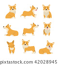 Cartoon Characters Welsh Corgi Set. Vector 42028945