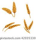 wheat, barley, 3d 42035330