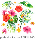 illustration of a realistic style branch of a tropical palm tree with hibiscus flowers 42035345