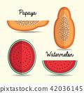 papaya and watermelon paper art style 42036145