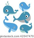 whale vector collection design 42047470