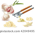 Vector clipart with garlic, cloves and metal press 42049495