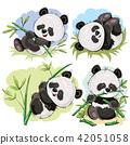 Playful panda bear baby with bamboo cartoon  42051058