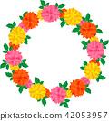 flower, flowers, dahlia 42053957