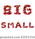 alphabet letters of big and small on white 42055259