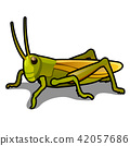 Green grasshopper isolated on a white background. Locusts. Pests of agriculture. Vector cartoon 42057686
