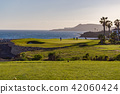 Golf players on a green facing the Atlantic Ocean 42060424