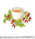 wild rose tea illustration 42060631