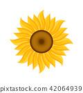 ฤดูร้อน,หน้าร้อน,แดดร้อน 42064939