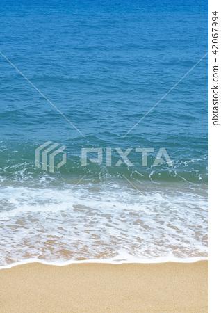 여름배경, 해안 세로 방향 사진 42067994