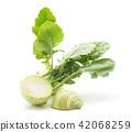 Raw kohlrabi isolated on white 42068259