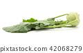 Raw kohlrabi isolated on white 42068279