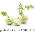 Raw kohlrabi isolated on white 42068312