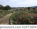 สถานที่ท่องเที่ยว,สวน,สวนสาธารณะ 42073894