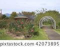 สถานที่ท่องเที่ยว,สวน,สวนสาธารณะ 42073895