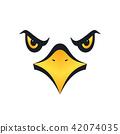 eagle, vector, bird 42074035