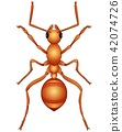 Vector illustration of Cartoon ant isolated a whit 42074726
