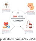 vector zika virus 42075858