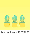 Cactus have thorn among cactus no thorn 42075973