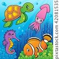 sea, ocean, animal 42081535