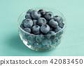 blueberries, blueberry, fruit 42083450