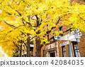 橫濱 元町 日本 42084035