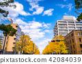 橫濱 元町 日本 42084039