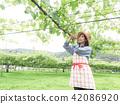 葡萄 相模原市 日本 42086920