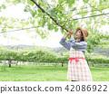 葡萄 相模原市 日本 42086922
