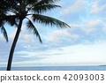 new caledonia, beach, beaches 42093003