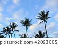 new caledonia, beach, beaches 42093005