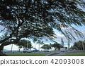 new caledonia, beach, beaches 42093008