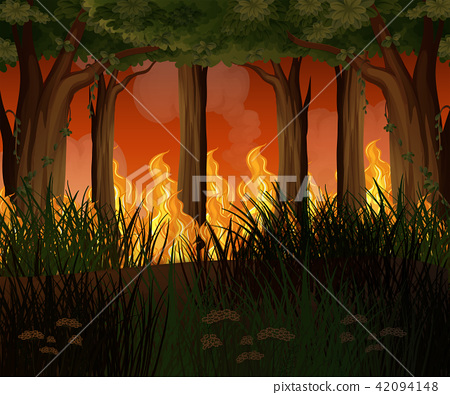 A Forest with Wildfire Disaster 42094148