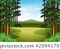 Scene of a beautiful woods 42094170