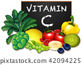 A Set of Vitamin C Fruit and Vegetable 42094225